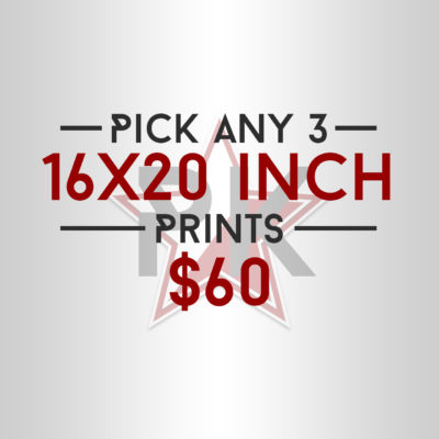 Pick 3 - 16x20 Inch Art Prints