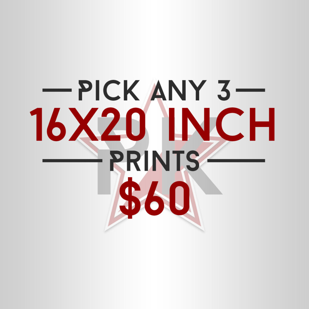 Pick Any 3 16x20 Posters Art Print