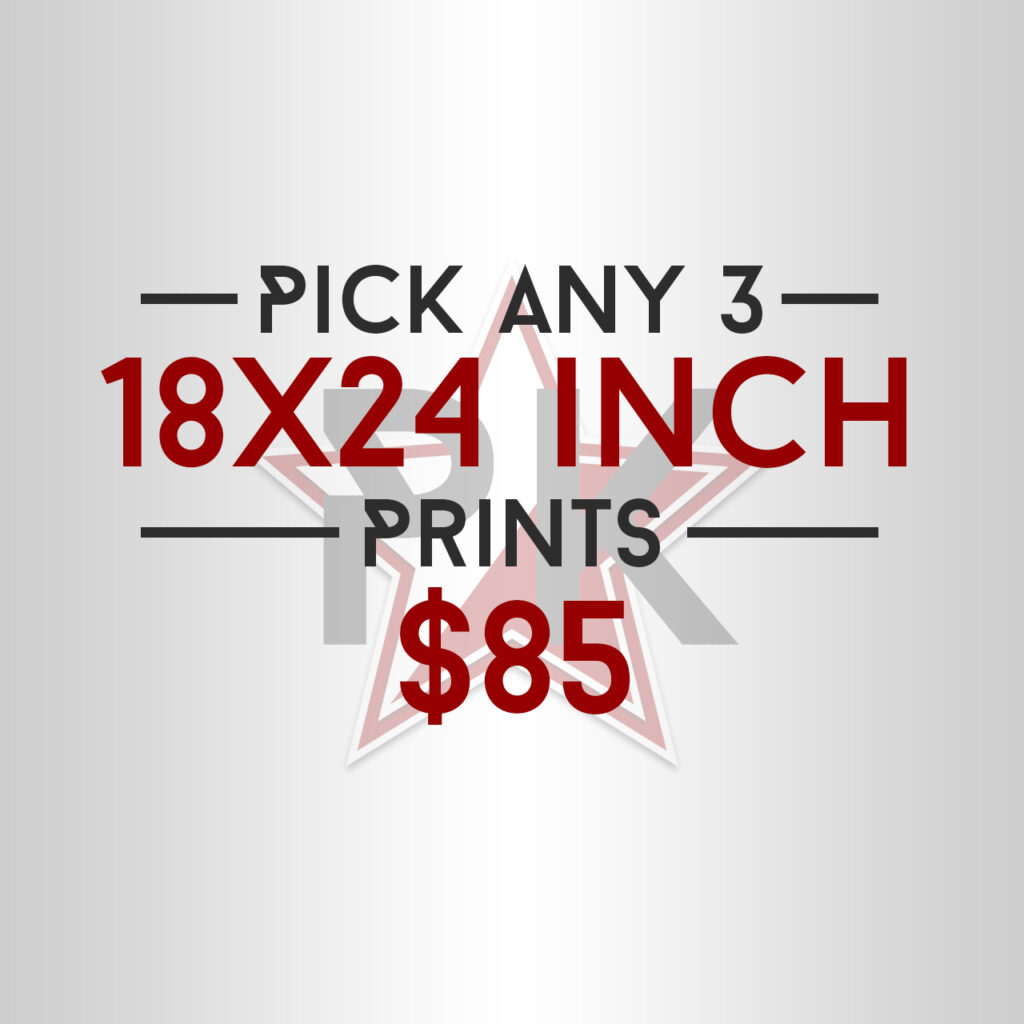 Pick Any 3 18x24 Posters Art Print